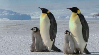Metro by T-Mobile TV Spot, 'Pinguinos' [Spanish]