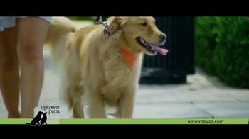 Uptown Pups TV Spot, 'The Most Interesting Pup in Town' Featuring Kevin Harrington - Thumbnail 3