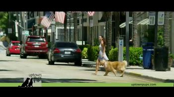 Uptown Pups TV Spot, 'The Most Interesting Pup in Town' Featuring Kevin Harrington - Thumbnail 4