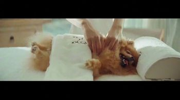 E*TRADE TV Spot, 'Bow Wow Wow' Song by George Clinton - Thumbnail 5