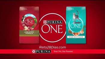 Purina ONE TV Spot, '28 Días. Una mascota visiblemente saludable.' [Spanish] - Thumbnail 8