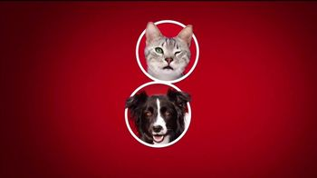 Purina ONE TV Spot, '28 Días. Una mascota visiblemente saludable.' [Spanish] - Thumbnail 2
