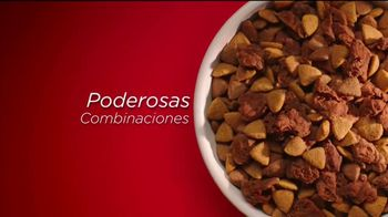 Purina ONE TV Spot, '28 Días. Una mascota visiblemente saludable.' [Spanish] - Thumbnail 4