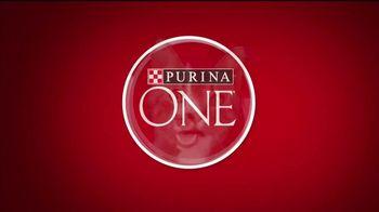 Purina ONE TV Spot, 'Una mascota visiblemente saludable' [Spanish]