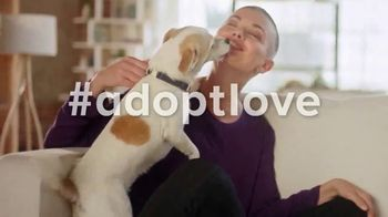 PetSmart National Adoption Weekend Event TV Spot, 'Love at First Sight'