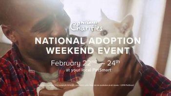 PetSmart National Adoption Weekend Event TV Spot, 'Love at First Sight' - Thumbnail 5
