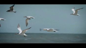 Visit Currituck TV Spot, 'Find Your Wild' - Thumbnail 5