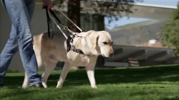 Guide Dogs of America TV Spot, 'The CW: In the Dark' - Thumbnail 5
