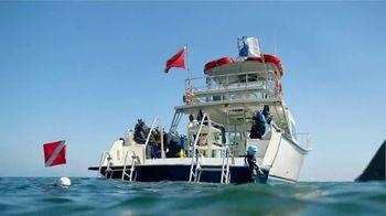Eyeglass World TV Spot, 'Shark Infested Waters' - Thumbnail 7