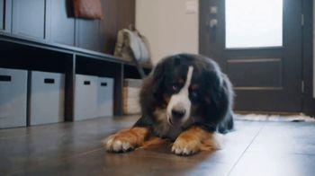 PetComfort Feeding System TV Spot, 'PetComfort Challenge' - Thumbnail 4