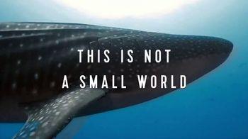Royal Caribbean Cruise Lines TV Spot, 'Not a Small World: Come Seek' - Thumbnail 1