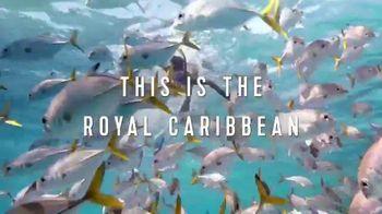 Royal Caribbean Cruise Lines TV Spot, 'Not a Small World: Come Seek' - Thumbnail 7