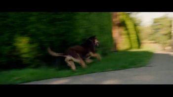 A Dog's Way Home - Alternate Trailer 11