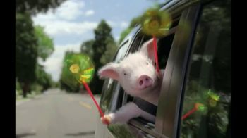 GEICO TV Spot, 'The Best of GEICO: Maxwell the Pig' - Thumbnail 5