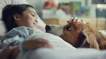 Pedigree TV Spot, 'Treatment'
