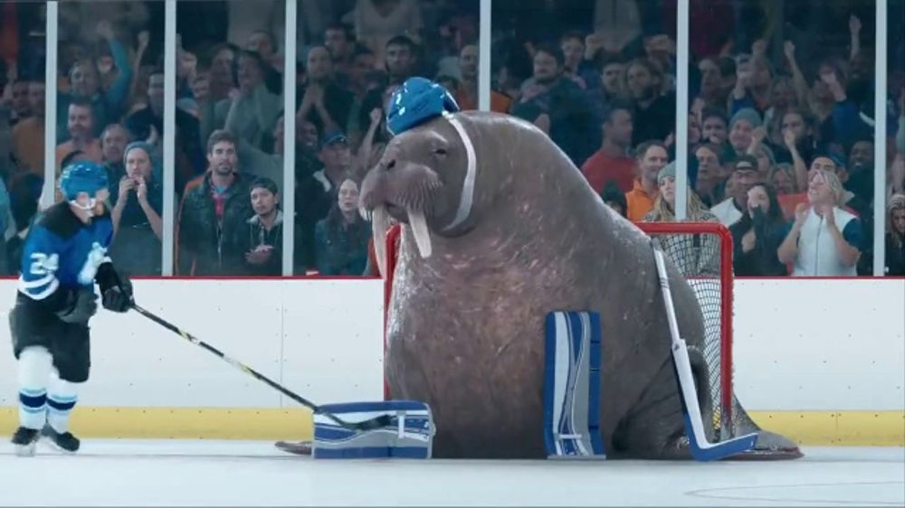 Geico Tv Commercial Walrus Goalie Ispot Tv