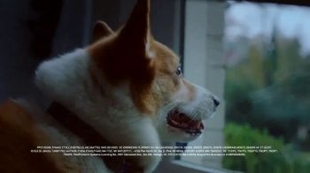 ADT TV Spot, 'Dog Walking Service'