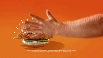 Hardee's Southern-Style Tender Sandwich TV Spot, 'Crispy Yet Juicy' Featuring David Koechner - Thumbnail 10