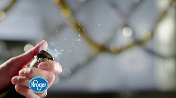 The Kroger Company TV Spot, '2018 Holidays: Making Spirits Bright' - Thumbnail 2