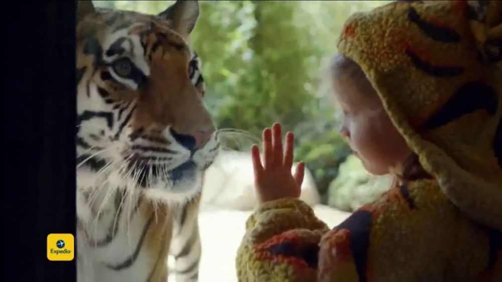 Expedia Tv Commercial Tiger Costume Ispottv