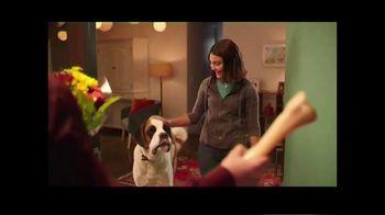 PetSmart TV Spot, 'Plan a Dog-Friendly Date Night' - Thumbnail 10