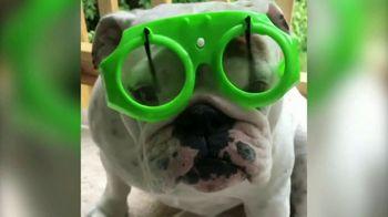 Facebook Watch TV Spot, 'World's Most Amazing Dog'