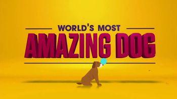 Facebook Watch TV Spot, 'World's Most Amazing Dog' - Thumbnail 10