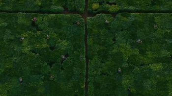 Lipton TV Spot, 'Tea Factory' - Thumbnail 2
