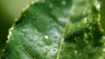 Lipton TV Spot, 'Tea Factory' - Thumbnail 6