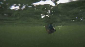 Berkley Fishing PowerBait TV Spot, 'More Fish' - Thumbnail 8