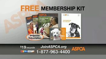 ASPCA TV Spot, 'New Donors Urgently Needed' Song by Susan Boyle - Thumbnail 8
