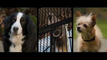 A Dog's Way Home - Alternate Trailer 25