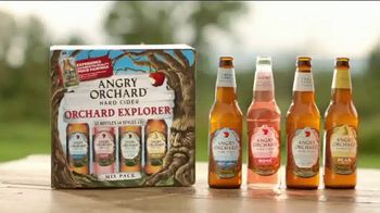 Angry Orchard Explorer Mix Pack TV Spot, 'Cider Lessons: Pairings' - Thumbnail 3