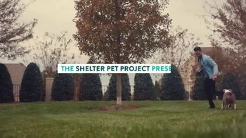 The Shelter Pet Project TV Spot, 'Adopt Pure Love: Logan Ryan' Song by Clarence Murray - Thumbnail 1