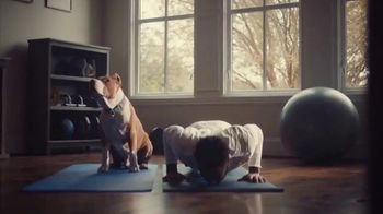 The Shelter Pet Project TV Spot, 'Adopt Pure Love: Logan Ryan' Song by Clarence Murray - Thumbnail 3