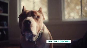 The Shelter Pet Project TV Spot, 'Adopt Pure Love: Logan Ryan' Song by Clarence Murray - Thumbnail 5