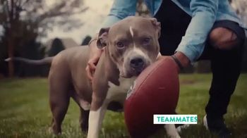The Shelter Pet Project TV Spot, 'Adopt Pure Love: Logan Ryan' Song by Clarence Murray - Thumbnail 8