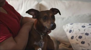 The Shelter Pet Project TV Spot, \'Renee and Turtle\'