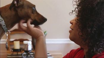 The Shelter Pet Project TV Spot, 'Renee and Turtle' - Thumbnail 6
