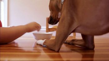 The Shelter Pet Project TV Spot, 'Renee and Turtle' - Thumbnail 7