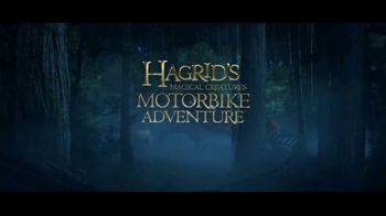 The Wizarding World of Harry Potter TV Spot, 'New Attraction: Hagrid's Motorbike Adventure' - Thumbnail 10