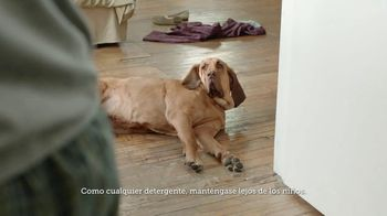 Gain Flings! TV Spot, 'La toalla del perro' [Spanish] - Thumbnail 5