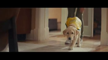 Eukanuba TV Spot, 'A Hero in the Making'