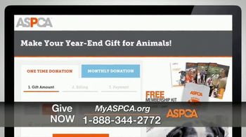 ASPCA TV Spot, 'One Last Holiday Gift' - Thumbnail 8