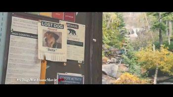 A Dog's Way Home - Alternate Trailer 17