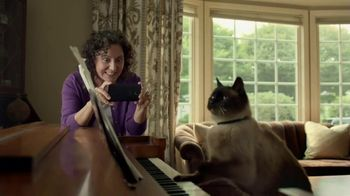 Viral Cat PBS thumbnail