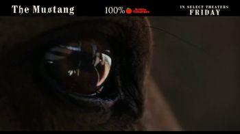 The Mustang - Thumbnail 3