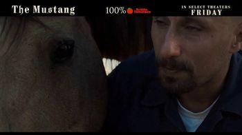 The Mustang - Thumbnail 7