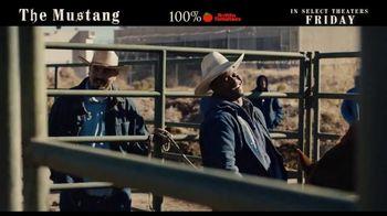 The Mustang - Thumbnail 9