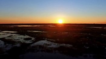 Discover the Palm Beaches TV Spot, 'The Everglades' - Thumbnail 2